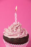 Pink birthday cupcake Royalty Free Stock Photo