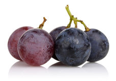 Pink and Black grapes Stock Images