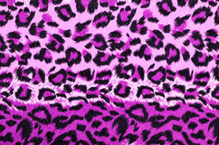 Pink and black leopard fur pattern. Royalty Free Stock Images