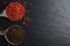 Pink and black peppercorns on a spoon Royalty Free Stock Photography
