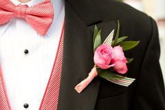 Pink and Black Tuxedo Stock Photo