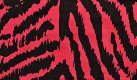 Pink and black zebra pattern. Magenta animal print as background Royalty Free Stock Image