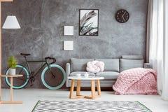 Pink blanket in cozy living room Stock Photos