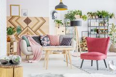 Red living room interior. Pink blanket and patterned cushions on sofa near red chair and wooden table in floral living room interior royalty free stock image