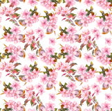 Pink blooming fruit flowers apple, cherry, plum. Seamless floral pattern. Watercolor on white background Royalty Free Stock Photos