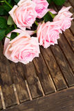 Pink blooming roses on wood Royalty Free Stock Image
