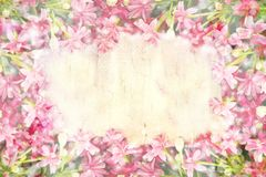 Pink blossom blooming flower border and frame on wooden background. Colorful pink blossom blooming flower border and frame on wooden background with copy space royalty free stock photos