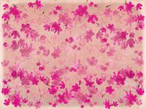 Pink blossom flower on parchment Stock Photos
