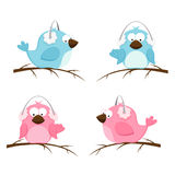 Pink and blue birds vector illustration