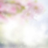 Pink and blue bokeh background. With light beams royalty free stock photo