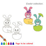 Pink and Blue Bunny to be colored. Game for kids. Stock Photo