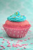Pink and blue cupcake Royalty Free Stock Image