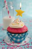Pink and blue cupcake Stock Image