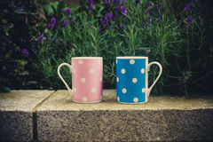 Pink and blue cups outside Stock Image