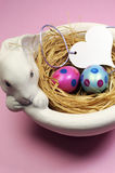 Pink and blue Easter eggs in white bunny bowl - vertical. Stock Image