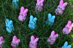 Pink and Blue Easter marshmallow rabbits in green grass