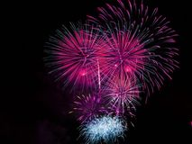 Pink and Blue Fireworks Display during Night Time Royalty Free Stock Photos