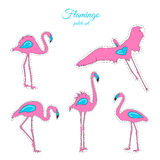 Pink blue flamingo birds fashion patch badges set Stock Images