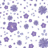 Pink and blue flowers. floral vector pattern Royalty Free Stock Images
