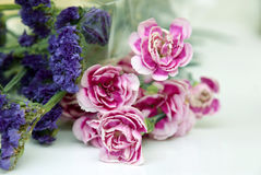 Pink and blue flowers on white.  Stock Photos