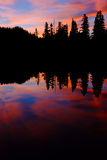 Pink and Blue Sunset and Trees Reflected in Alpine Lake. Royalty Free Stock Images