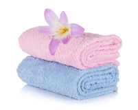 Pink and blue towels and flower Stock Images