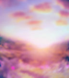 Pink  blurred nature background with sunlight  sky Stock Images
