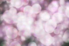 Pink Bokeh Background Royalty Free Stock Image