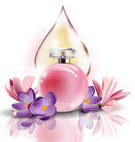 Pink bottle women`s perfume with spring flowers crocuses and with a drop of pink color . Vector Royalty Free Stock Photography