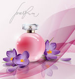 Pink bottle women`s perfume with spring flowers crocuses . Vector Royalty Free Stock Image