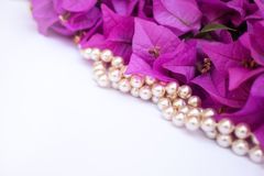 Pink bougainvillea flowers and pearls laid diagonally on a white stock photo