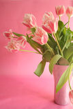 Pink bouquet. Delicate bouquet of tulips stock photos