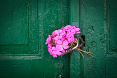 Pink bouquet on old door. Pink bouquet of geraniums left as a love message on an old textured door Royalty Free Stock Photography