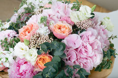 Pink bouquet of Roses, Hydrangea and eucalyptus. Bouquet of Roses, Hydrangea and eucalyptus Stock Photos