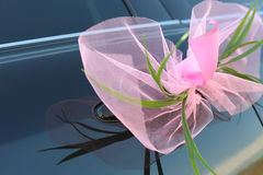 Pink bow on car door Royalty Free Stock Photos