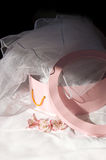 Pink box and bride's veil Stock Photo