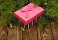 Pink box and green branches Royalty Free Stock Images