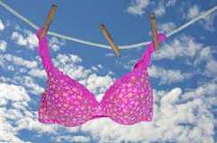 Pink bra hanging on clothesline Stock Image