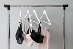 Vareity of bra hanging on a hanger. Textile, Underwear. Female bra in lingerie underwear store. Advertise, sale, fashion
