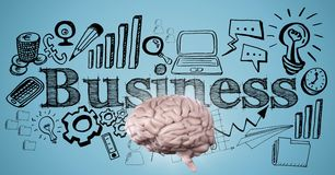 Pink brain against black business doodle and blue background Royalty Free Stock Photography