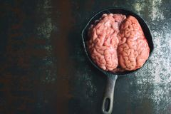 Pink brain before cooking on black metal frying pan. Raw meat. Offal.  royalty free stock images