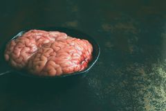 Pink brain before cooking on black metal frying pan. Raw meat. Offal.  royalty free stock image