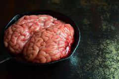 Pink brain before cooking on black metal frying pan. Raw meat. Offal.  stock images