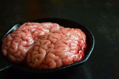 Pink brain before cooking on black metal frying pan. Raw meat. Offal.  stock photos