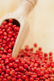 Pink or Brazil Pepper Stock Photos