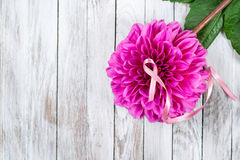 Pink breast cancer ribbon on pink flower. stock image