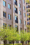 Pink brick residential building and green trees. Residential building and blue windows royalty free stock photography