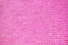 Pink brick wall background. Stock Image
