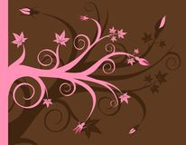 Pink and Brown Floral Stock Image