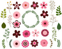 Pink and brown flower elements and green leaves set Stock Image